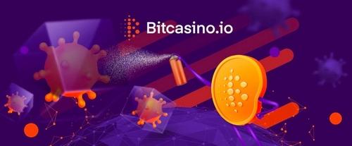 آدرس جدید Bitcasino
